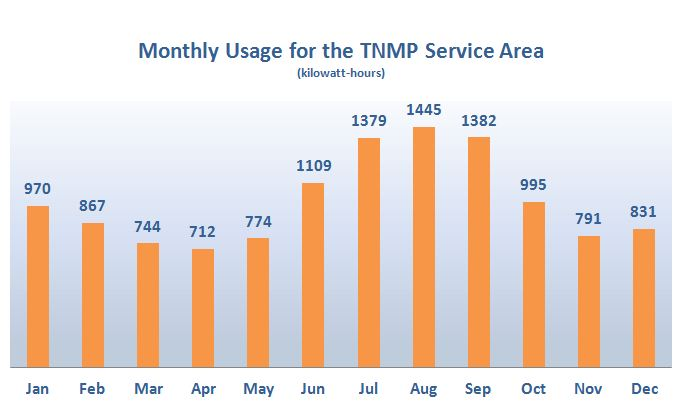 Monthly Usage for the TNMP Service Area